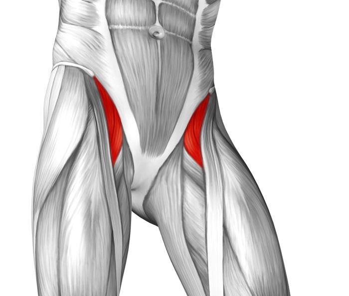 What Causes Tight Hip Flexors & How To Fix\'em