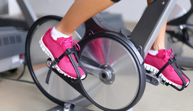Spin Bike Flywheel